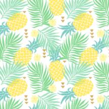 tropics - innamoreva
