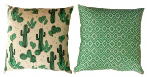 1426679139_coussin cactus rectoverso