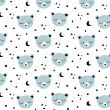 bear-moon-kimsa