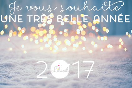 happy new year 2017 - www.lepetitmondedelilaxel.com